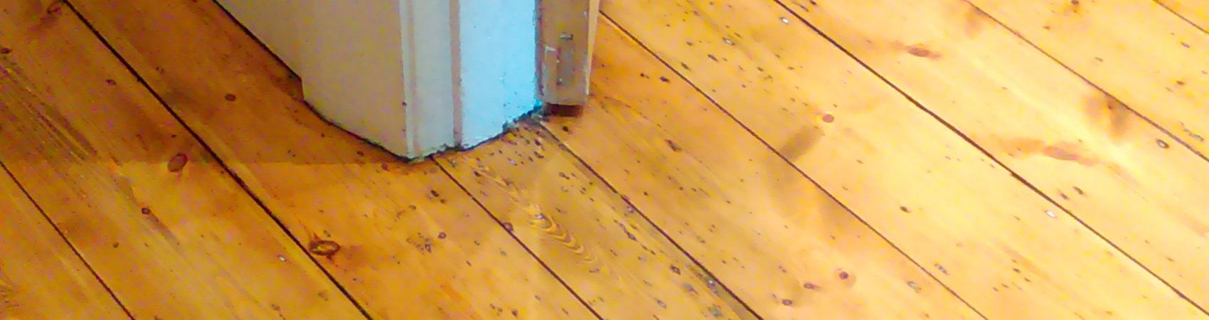 Floor Sanding Restoration SLD